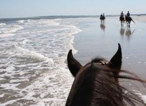 Horseback riding with Kelly Seahorse Ranch