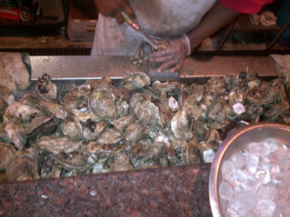 Picture of Large Oysters