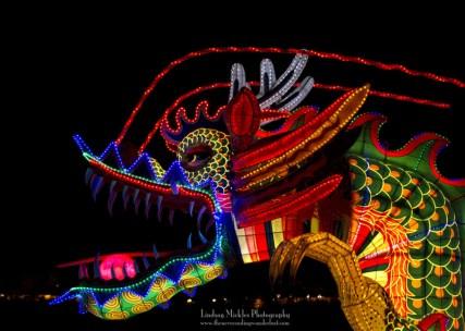 Jinju Lantern Festival and Namhae Oktoberfest: Jinju Lantern Festival, South Korea