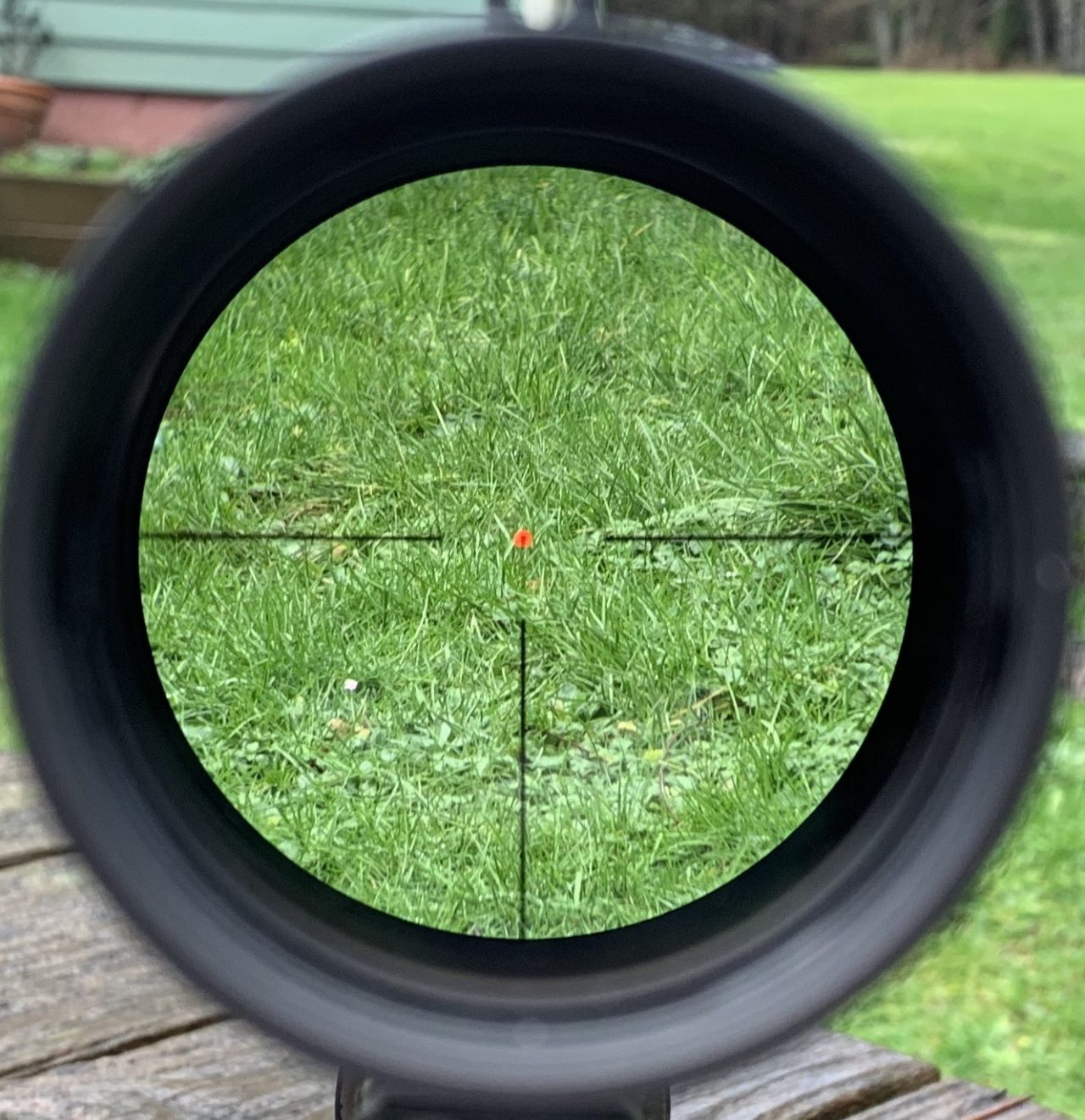 The bold crosshairs draw your eye to the reticle. The reticle is nice and bright on overcast days in the Pacific Northwest