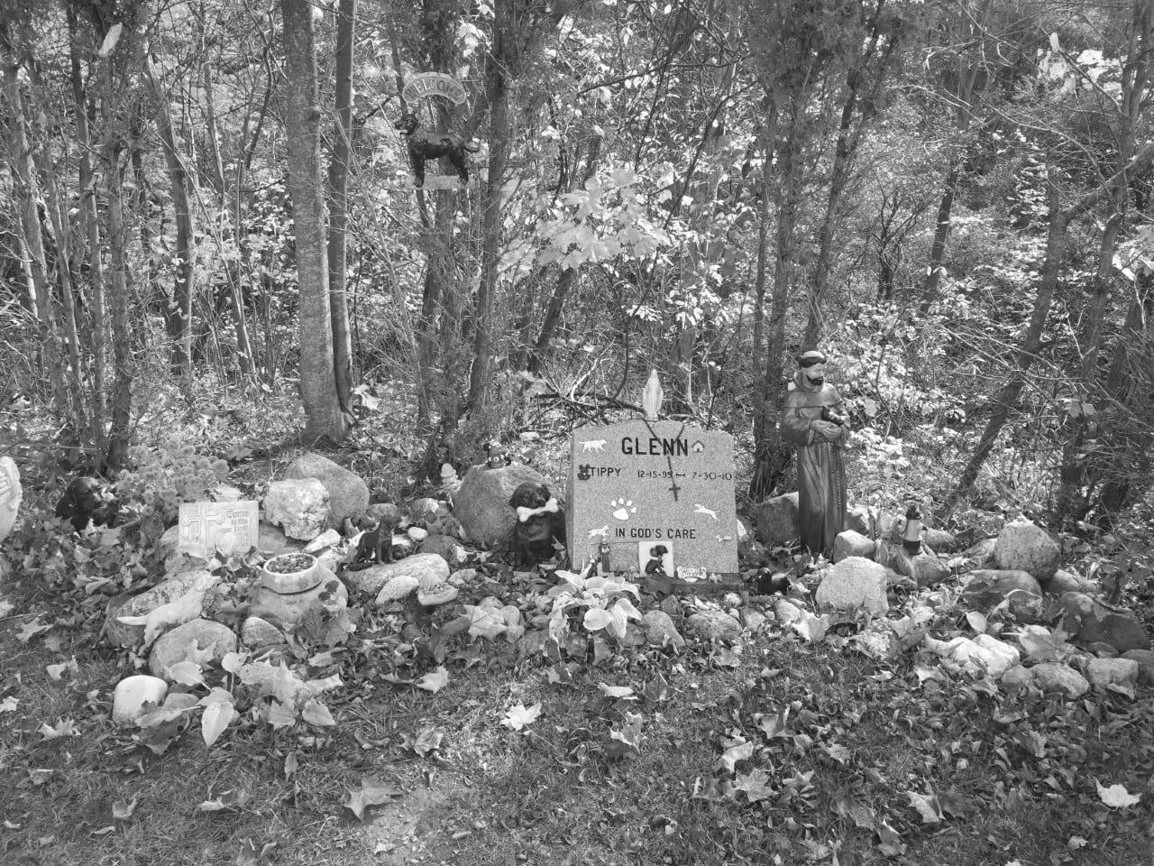 Pet gravesite