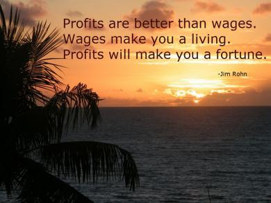 ProfitsWages