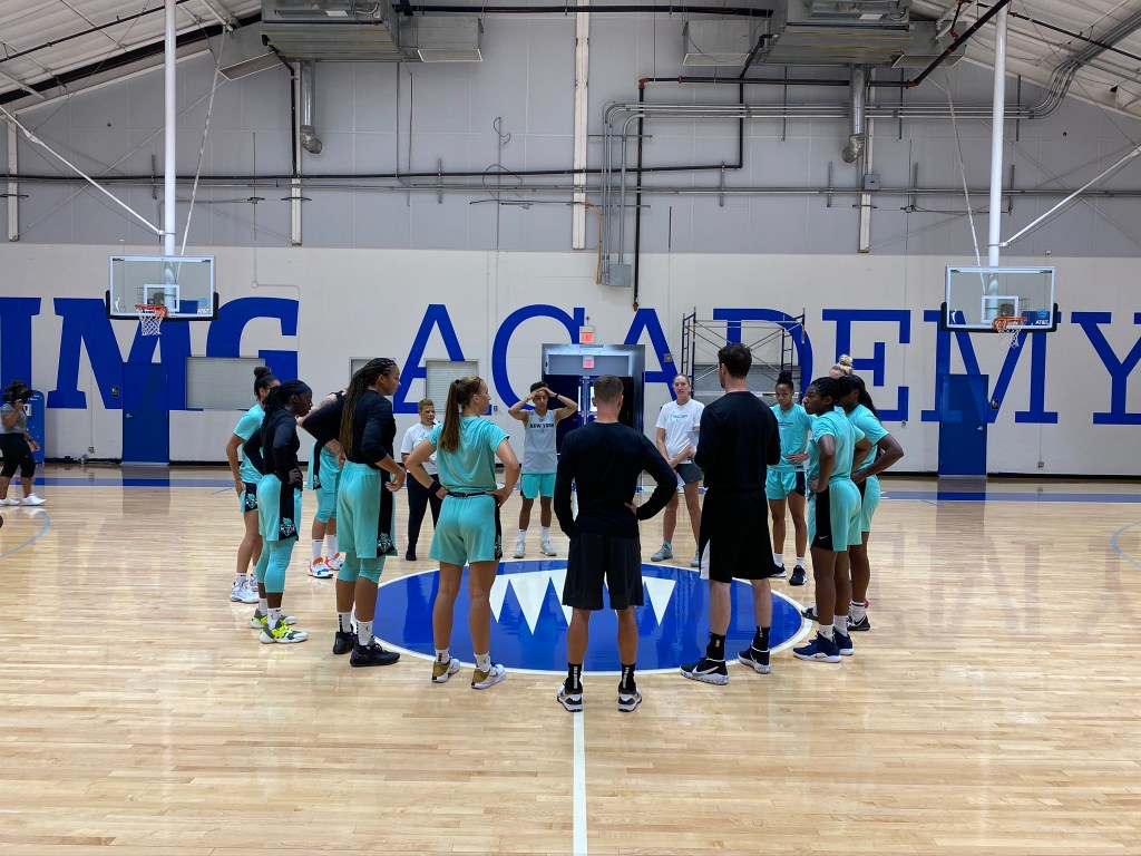 2020 is all about adjustments for the New York Liberty
