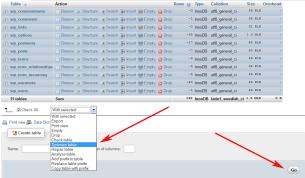 optimize wordpress database