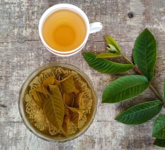 Stay Free From Chronic Diseases! With These 4 Beneficial Of Natural Tea