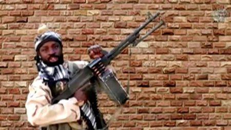 Boko Haram Militants Kill 8 in Southeastern Niger