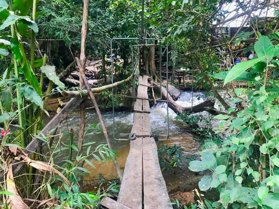 rickety old bridge in jungle