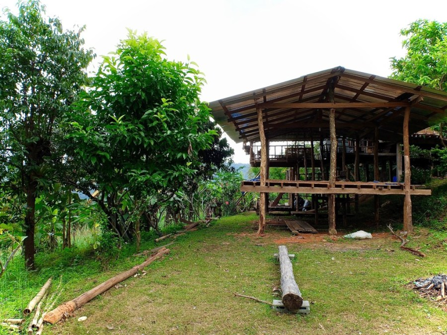 bungalow homestay in jungle