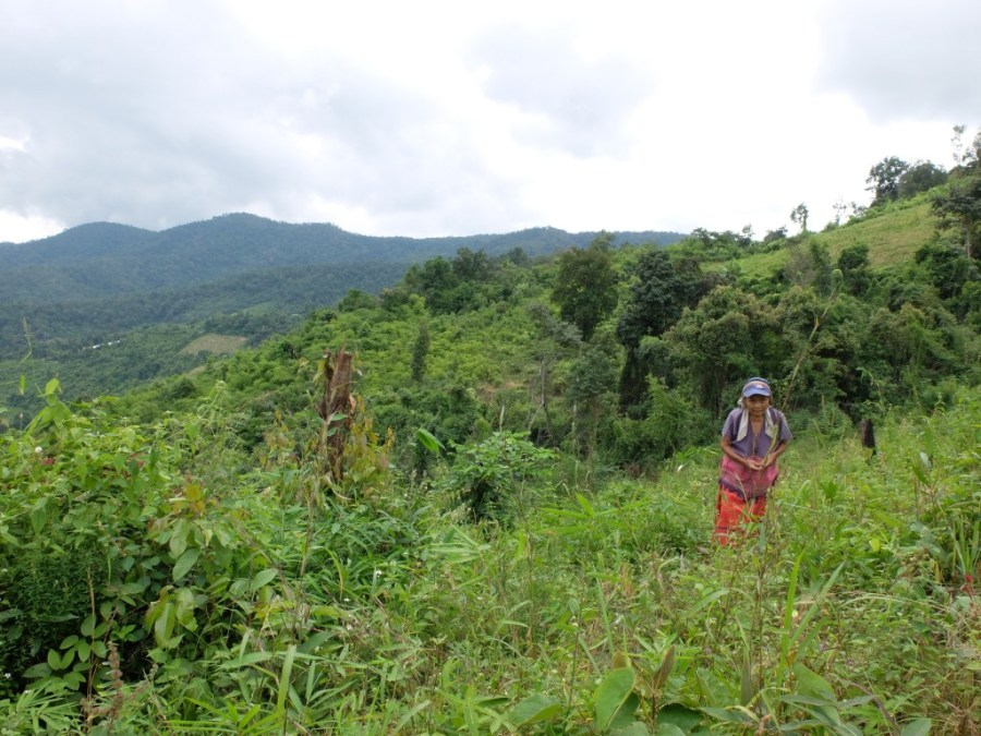 woman in field in thailand