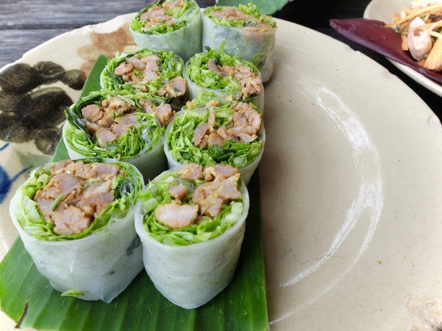 spring roll appetizer