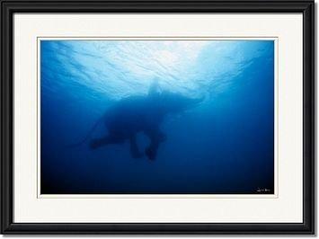 Framed fine art photo by Jonathan Kingston.