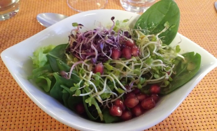Salad at HelVeg Café in Geneva, Switzerland