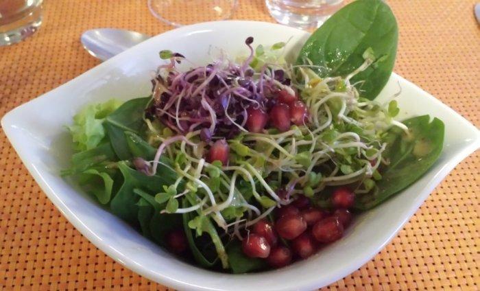 Salad at HelVeg Café in Geneva, Switzerland