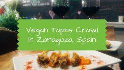 Vegan Tapas Crawl in Zaragoza, Spain
