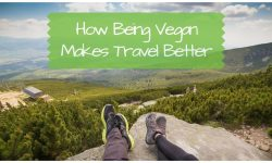 Vegan Benefits: How Being Vegan Makes Travel Better
