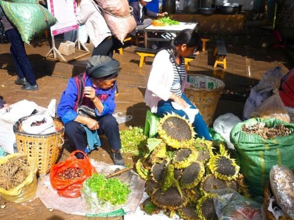 Sunflower seeds sold straight from the sunflower! - Living The China Study
