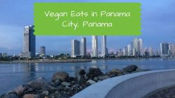 Vegan in Panama