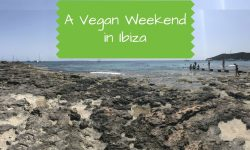 A Vegan Weekend in Ibiza - vegan Ibiza