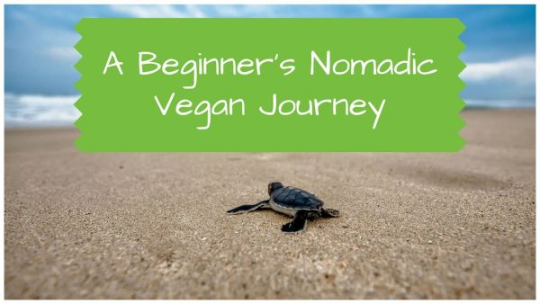 Becoming Vegan and Nomadic - A Beginner's Journey