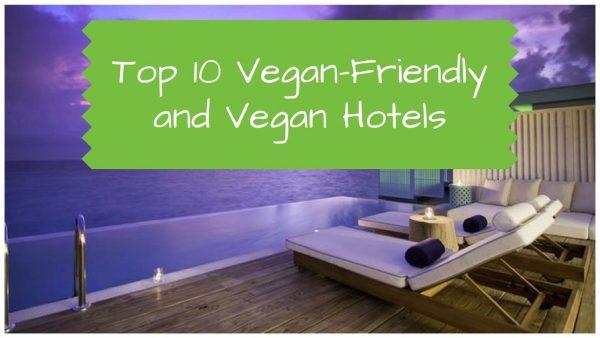 Top 10 Vegan-Friendly and Vegan Hotel