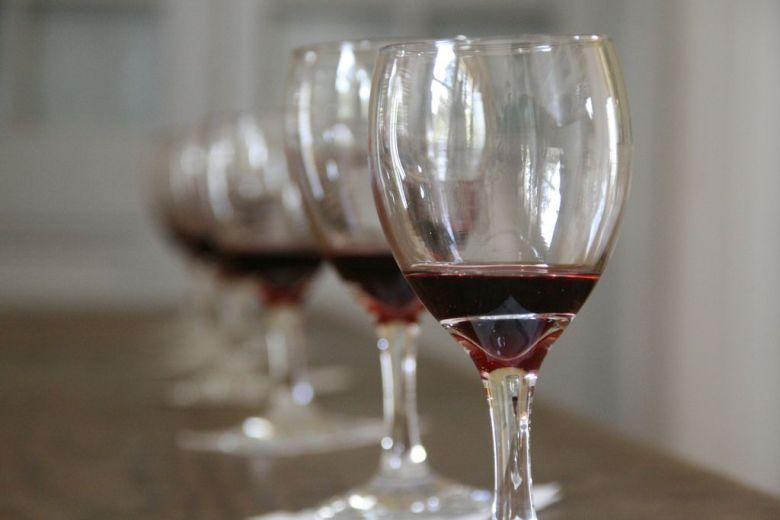 Wine tasting glasses - organic vegan wine brands