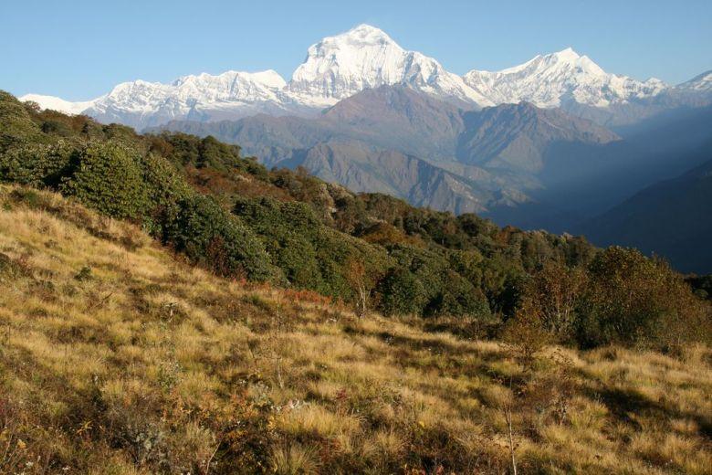 Annapurna circuit - travel vegan in Nepal
