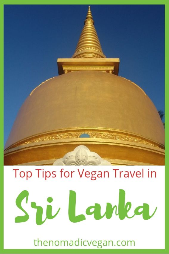 Top Tips for Sri Lanka Vegan Travel