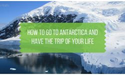 How to Go to Antarctica and Have the Trip of Your Life