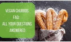 Vegan Churros FAQ - All Your Questions Answered