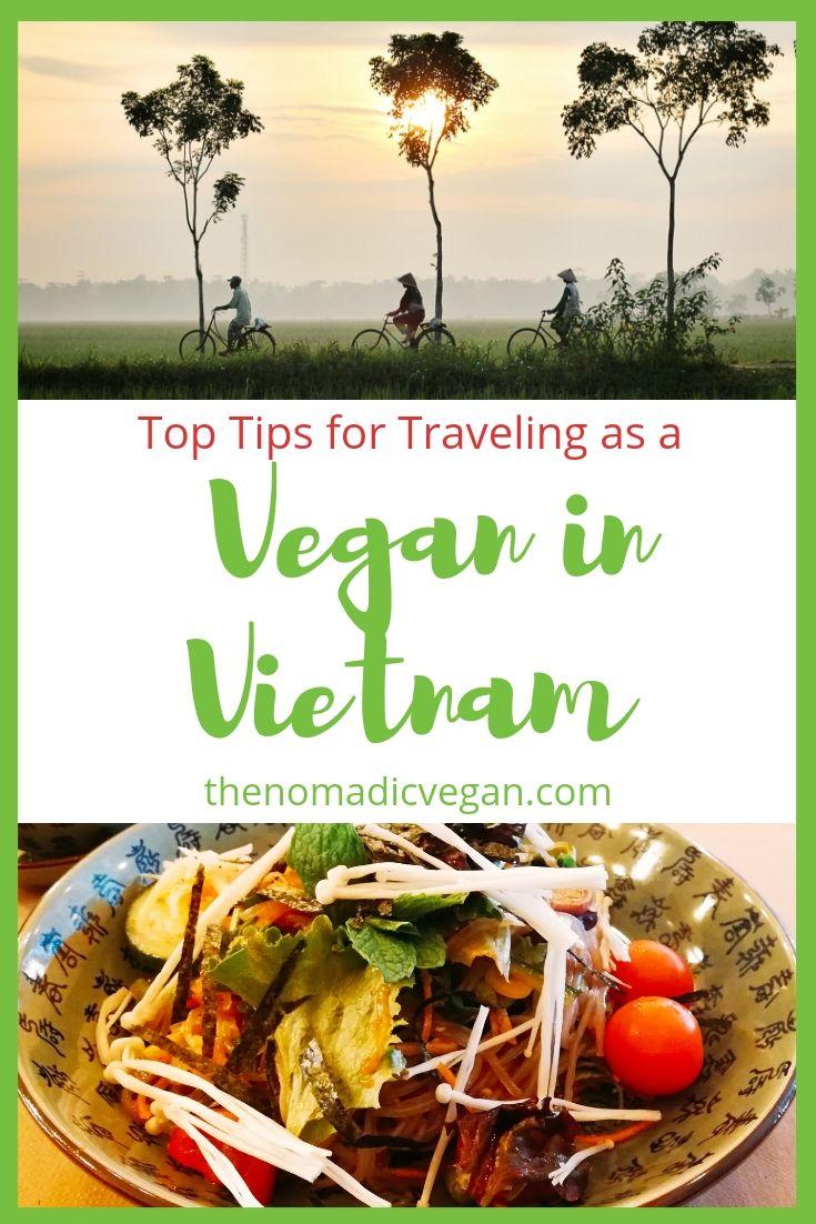 Vegan Vietnam Top Travel Tips