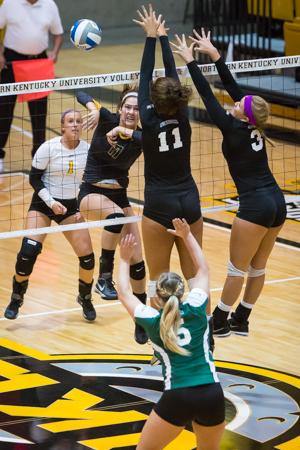 NKU's Jenna Ruble spikes the ball against Stetson in the third set of NKU's 3-0 win against the Hatters. NKU defeated Stetson 3-0 at Regents Hall on NKU Campus on Saturday, Nov. 1, 2014.