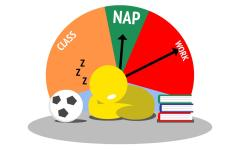 College students need to learn to love naps