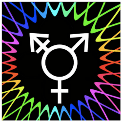 Trans_ blog hop badge