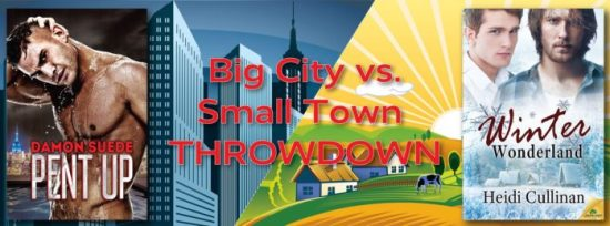 Big City vs. Small Town Banner