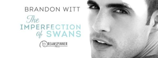 Imperfection of Swans Banner