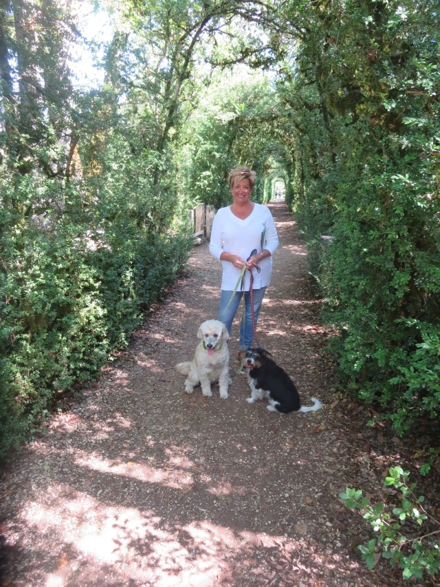 Me and the dogs in yet another beautiful pathway.
