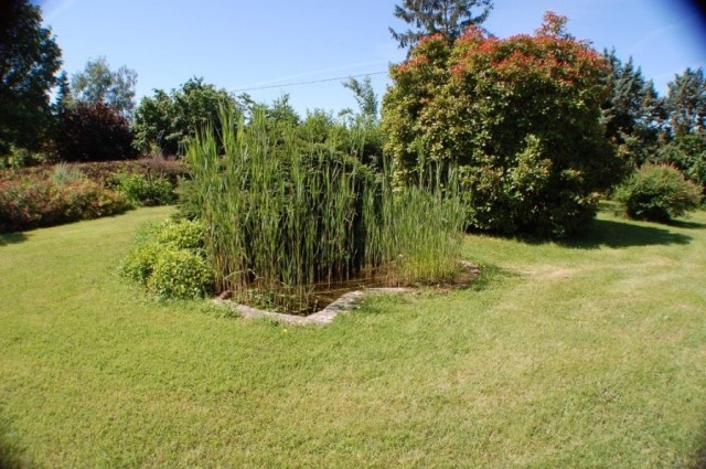 Small pond in front garden.