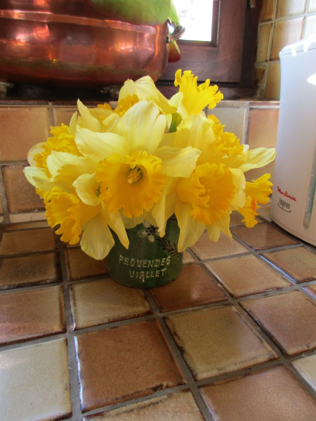 One of many daffodil arrangements cut from the new garden.