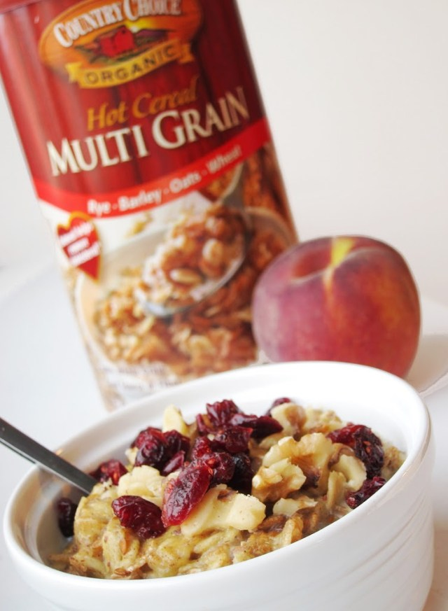 just-peachy-oatmeal-25285-2529