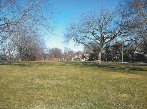 Photo courtesy of Michael Neglia About half an acre of this riverside parkland would be used for the dog park.