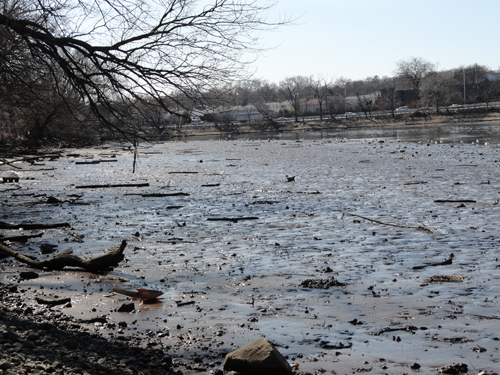 Photo courtesy of EPA A section of Lyndhurst mudflats slated for dredging.