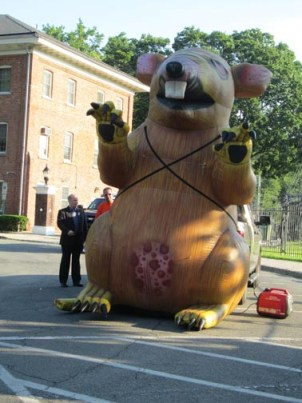 Photos by Ron Leir Inflatable rat and protestors greeted Nutley commissioners before last week's meeting.