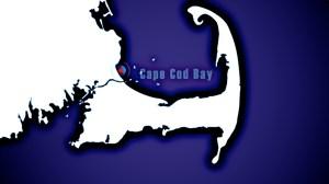 Cape Cod 046