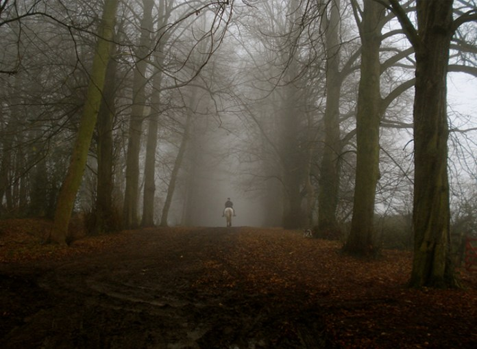 A Walk in the Woods: 7 of the World's Most Haunted Forests and Woodlands