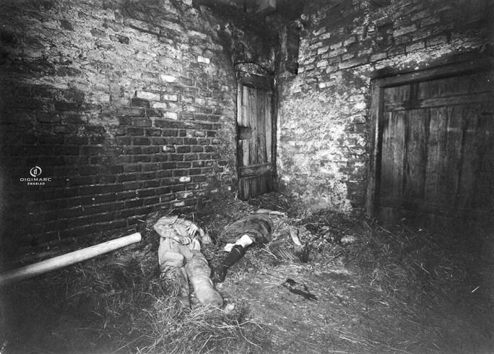 Hidden in the Woods: The Hinterkaifeck Murders