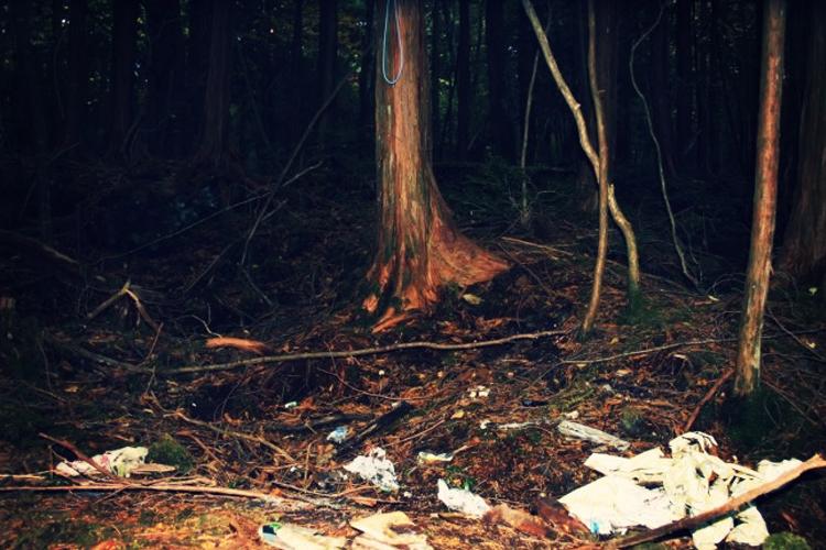Un endroit solitaire pour mourir: l'infâme forêt suicidaire du Japon