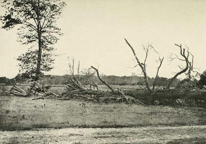 Traces of Death: The Haunted Battleground of Cold Harbor