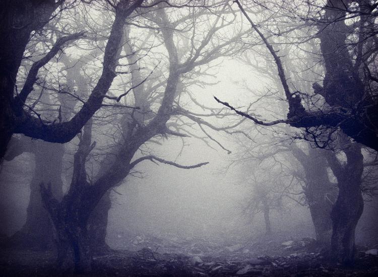 9 cauchemars communs et leur signification