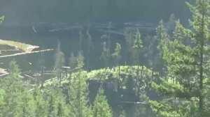 Hikers in Canada capture video footage of Bigfoot