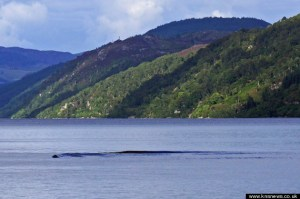 Does this photograph show the Loch Ness monster, or just a rogue wave?